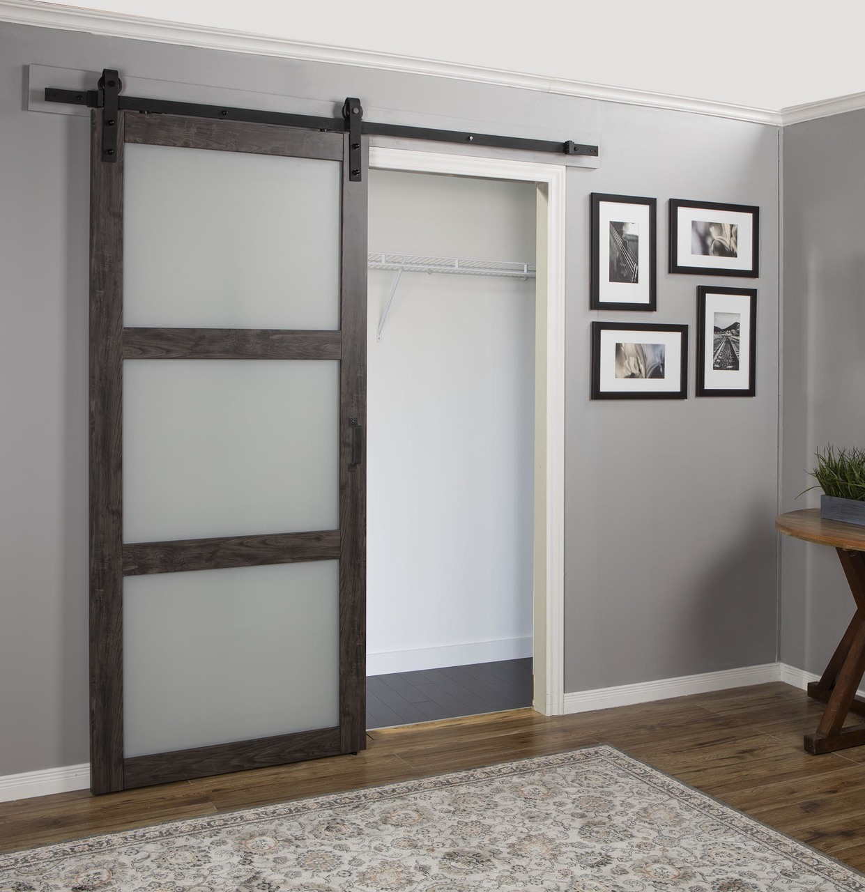 Hall Barn Door Renin