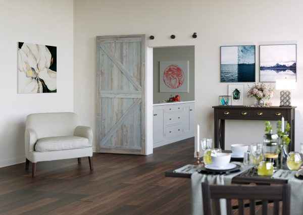 Renin Barn Doors North America