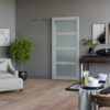Modern barn door with translucent glass and plant in the corner of the room